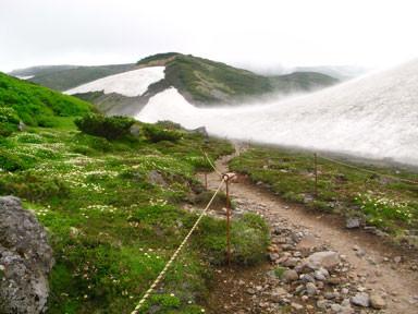 f:id:daisetsuzan:20100716223236j:image:w240