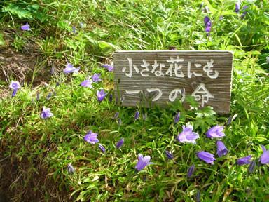 f:id:daisetsuzan:20100806214052j:image:w240