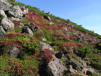 f:id:daisetsuzan:20100909211650j:image