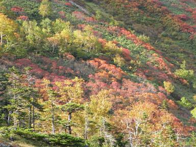 f:id:daisetsuzan:20100927194836j:image