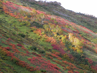 f:id:daisetsuzan:20100927194837j:image