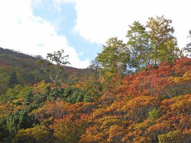 f:id:daisetsuzan:20100927195730j:image
