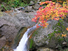 f:id:daisetsuzan:20101006191958j:image
