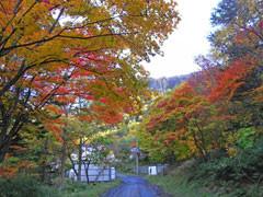 f:id:daisetsuzan:20101006191959j:image