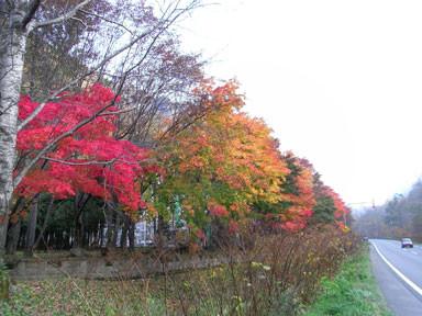 f:id:daisetsuzan:20101012151926j:image