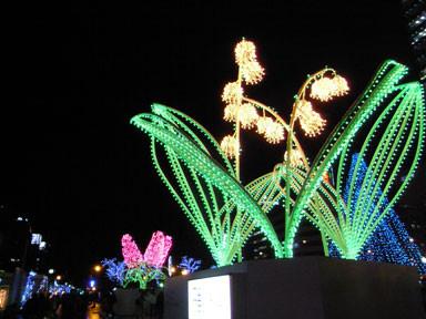 f:id:daisetsuzan:20101128202114j:image:w240