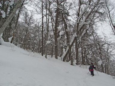 f:id:daisetsuzan:20110210174504j:image