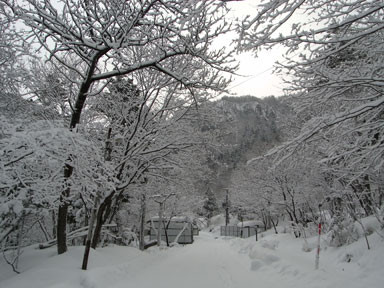 f:id:daisetsuzan:20110225180049j:image