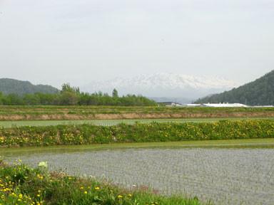 f:id:daisetsuzan:20110602221047j:image