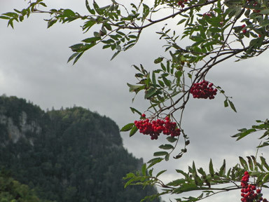 f:id:daisetsuzan:20110921235534j:image:w240