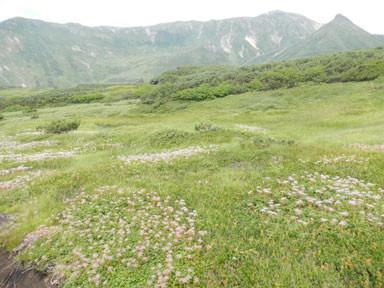 f:id:daisetsuzan:20120902135150j:image