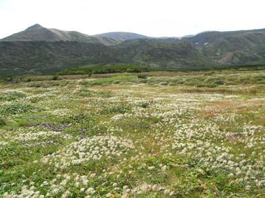 f:id:daisetsuzan:20120913210206j:image