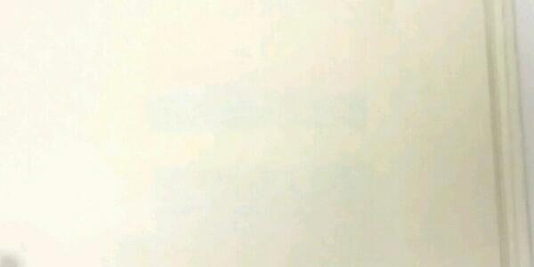 パイロット 蛍光ぺン フリクションライト SFL-60SL-6CS ソフトカラー4