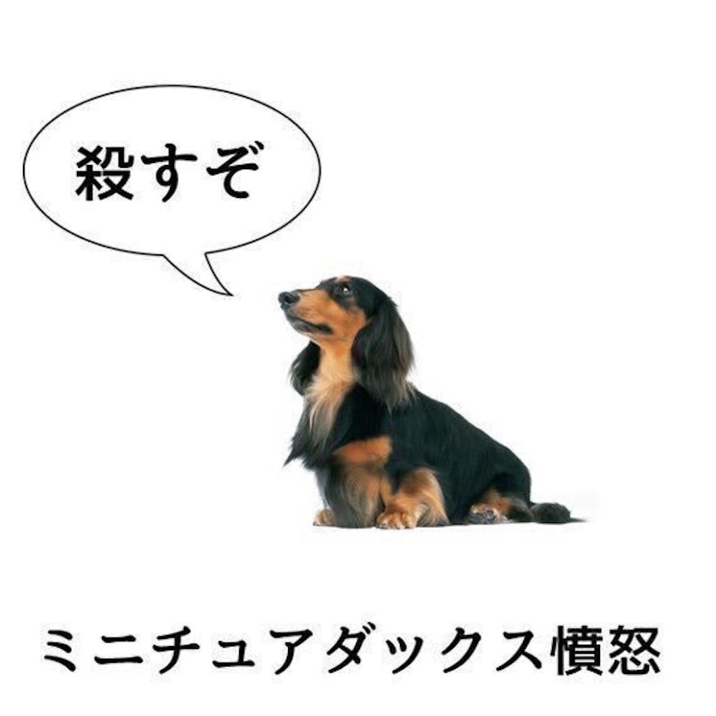 f:id:daishoji0122:20180707173456j:image