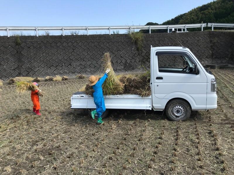 f:id:daisodaisuki:20180215215412j:plain