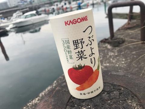 f:id:daisodaisuki:20180313220152j:plain
