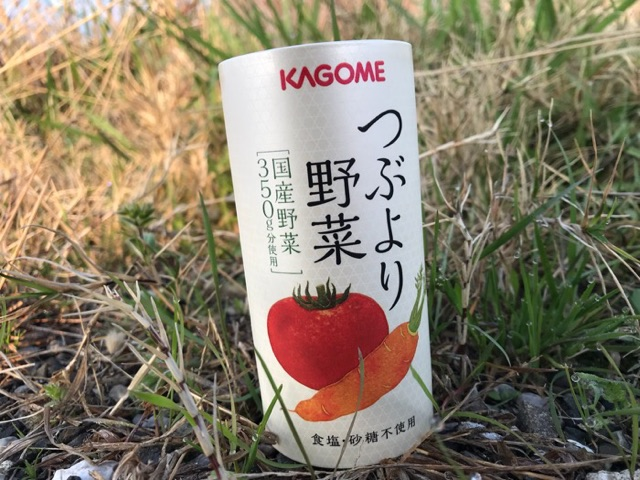 f:id:daisodaisuki:20180315220537j:plain