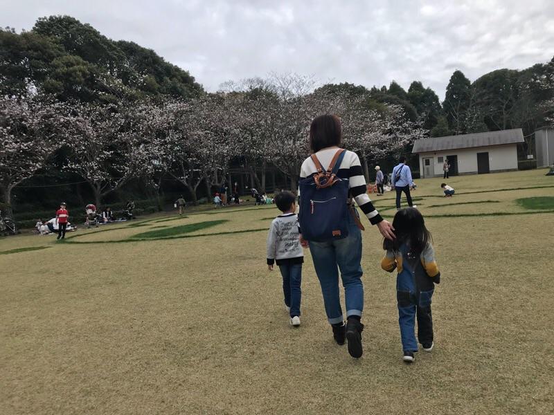 f:id:daisodaisuki:20180318202850j:plain