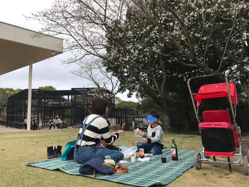 f:id:daisodaisuki:20180318203503j:plain