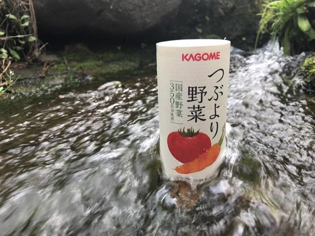 f:id:daisodaisuki:20180319202204j:plain