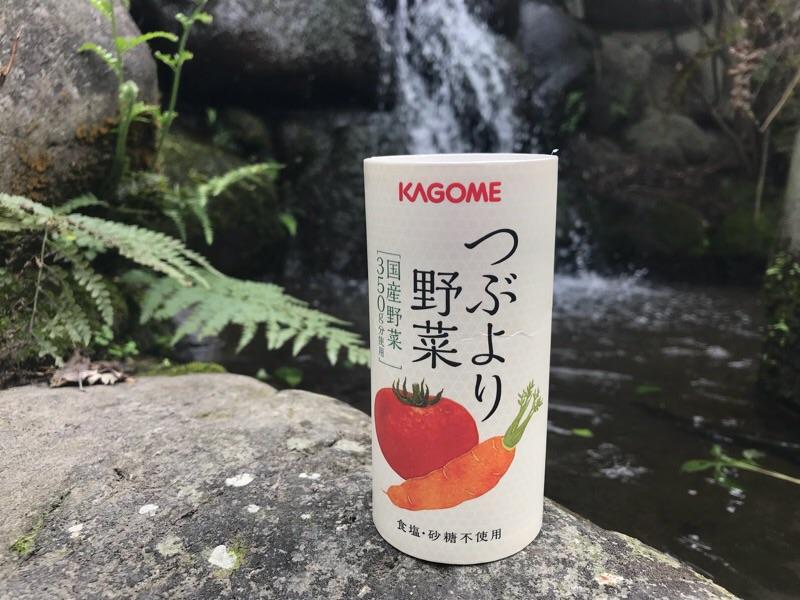 f:id:daisodaisuki:20180322204149j:plain