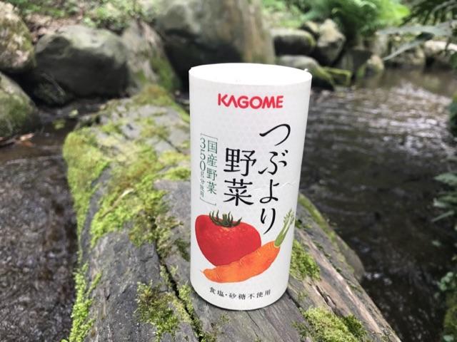 f:id:daisodaisuki:20180323211554j:plain