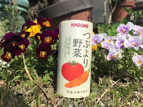 f:id:daisodaisuki:20180326212302j:plain
