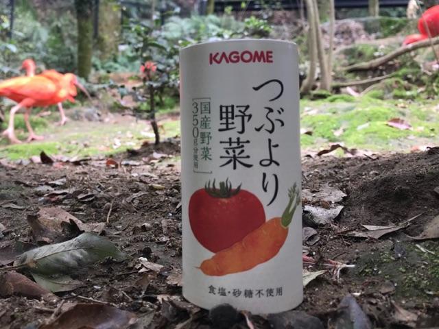 f:id:daisodaisuki:20180327213256j:plain