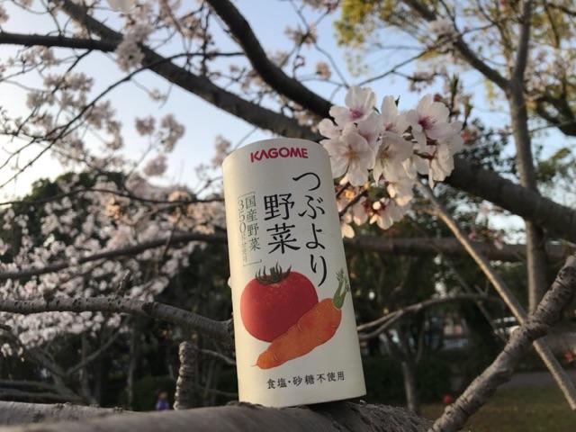 f:id:daisodaisuki:20180330215420j:plain