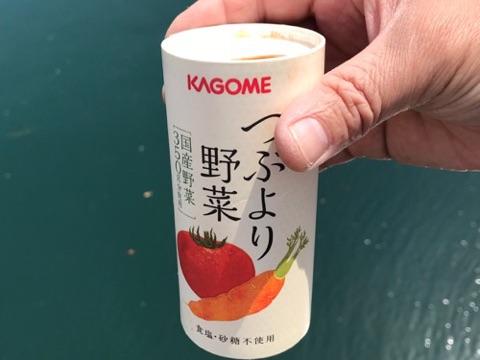 f:id:daisodaisuki:20180403211419j:plain