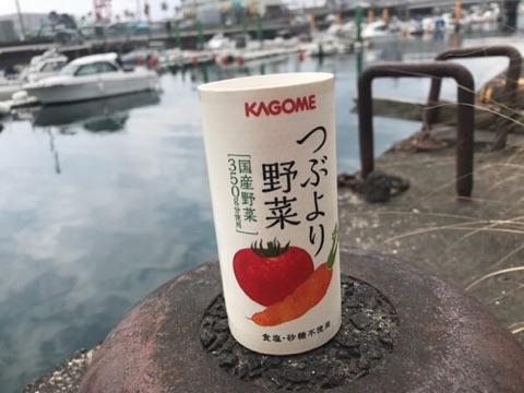 f:id:daisodaisuki:20180405213728j:plain