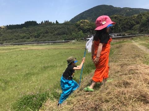 f:id:daisodaisuki:20180422200517j:plain