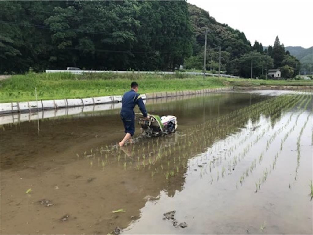 f:id:daisodaisuki:20180617173554j:image