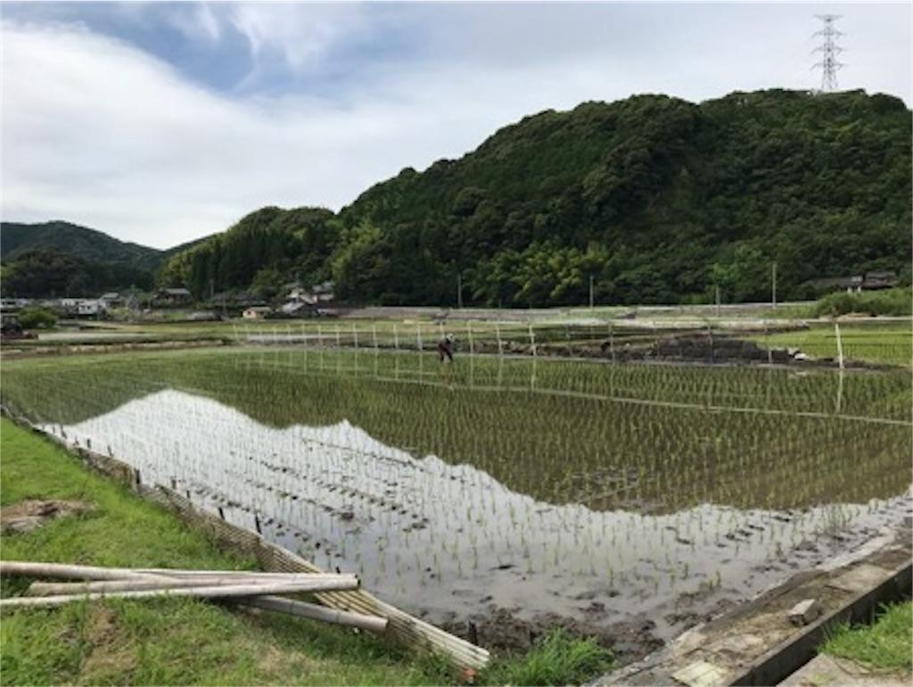 f:id:daisodaisuki:20180617174253j:image