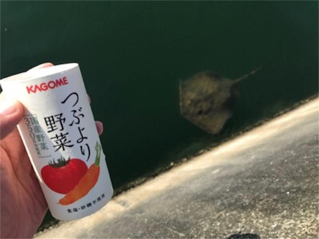 f:id:daisodaisuki:20180712203106j:image