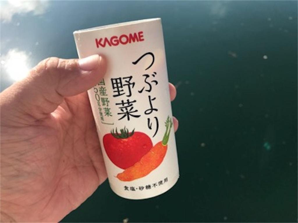 f:id:daisodaisuki:20180724124918j:image