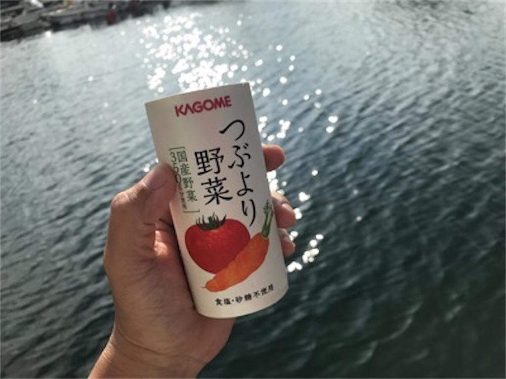 f:id:daisodaisuki:20180731200736j:image