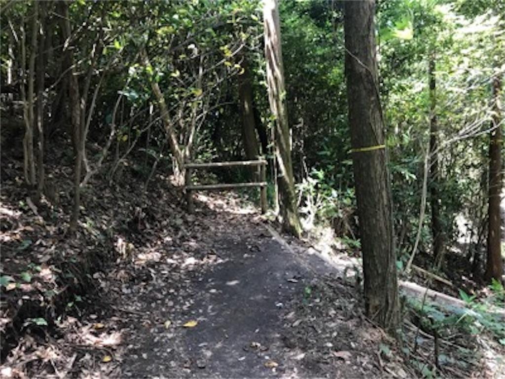 f:id:daisodaisuki:20180811154742j:image