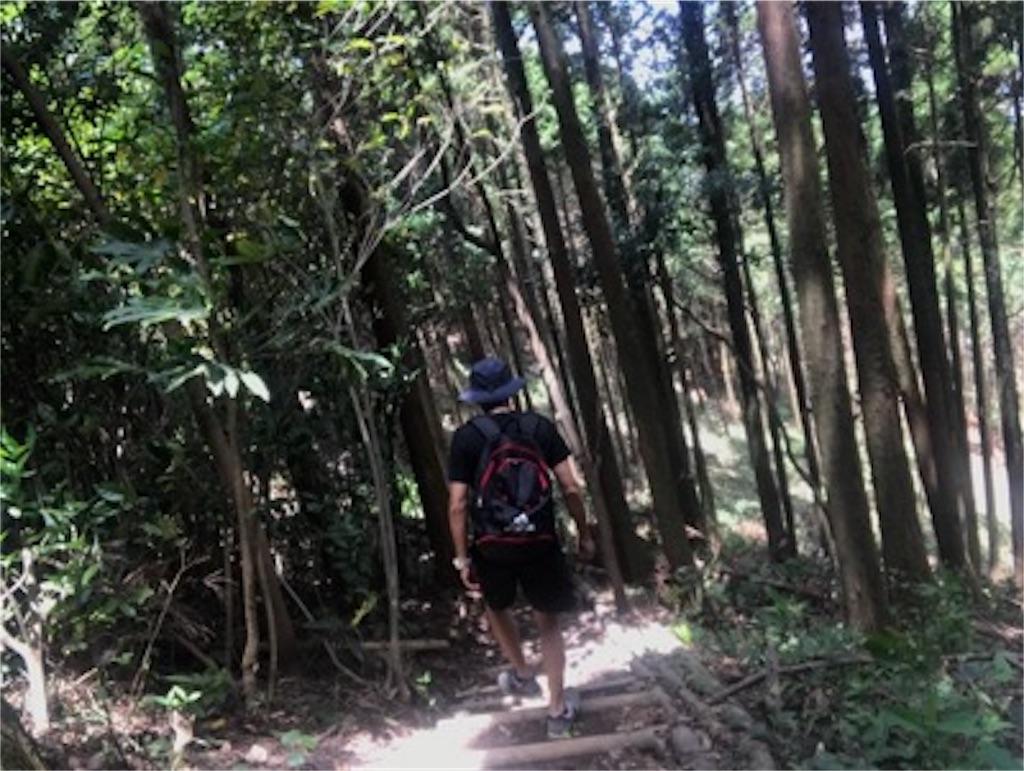 f:id:daisodaisuki:20180811154756j:image
