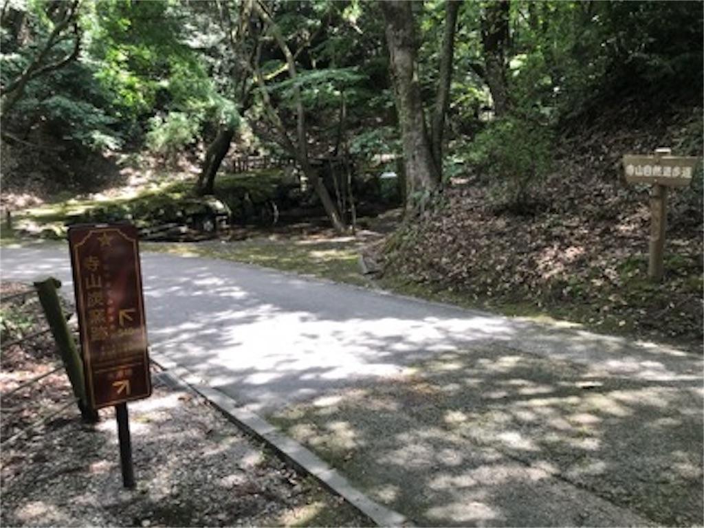 f:id:daisodaisuki:20180812113043j:image