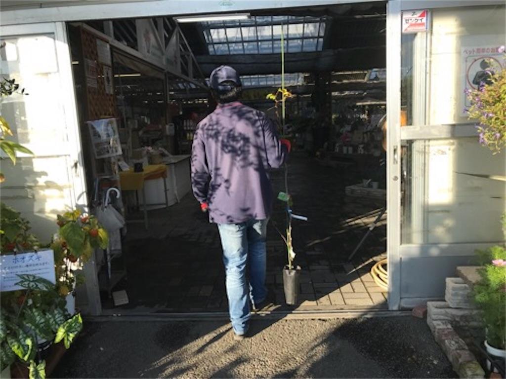 f:id:daisodaisuki:20180926205703j:image