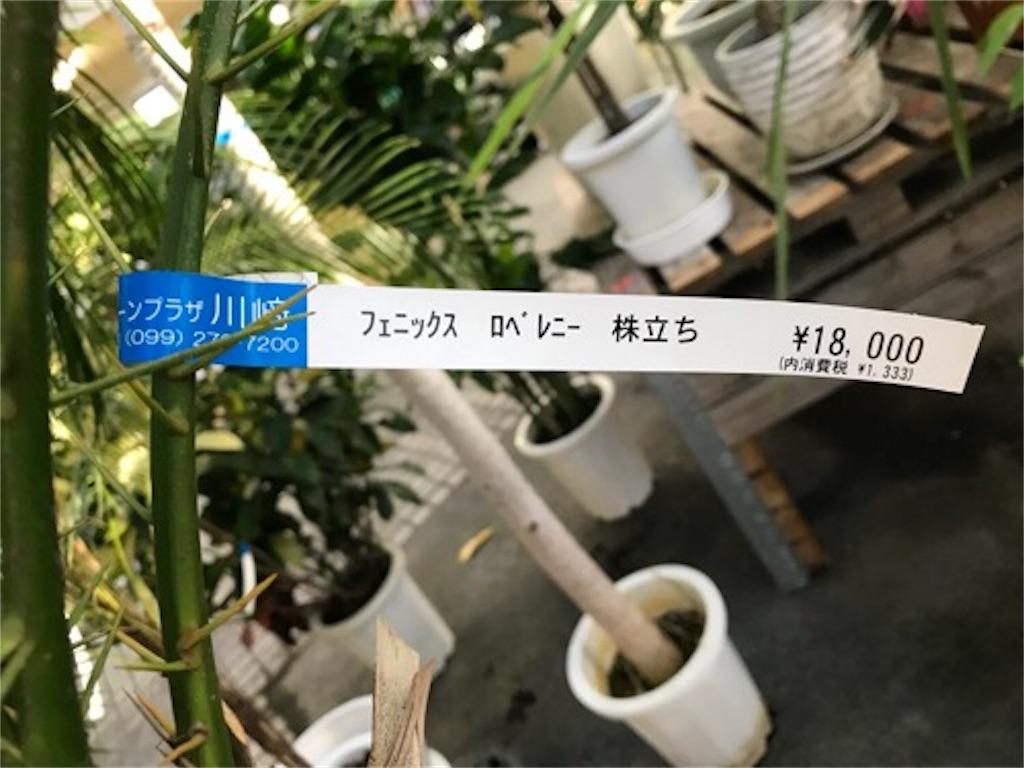 f:id:daisodaisuki:20180926211810j:image