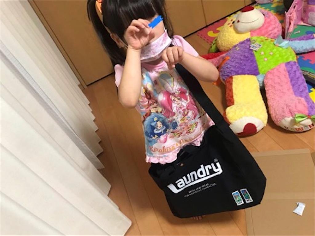 f:id:daisodaisuki:20181001203955j:image