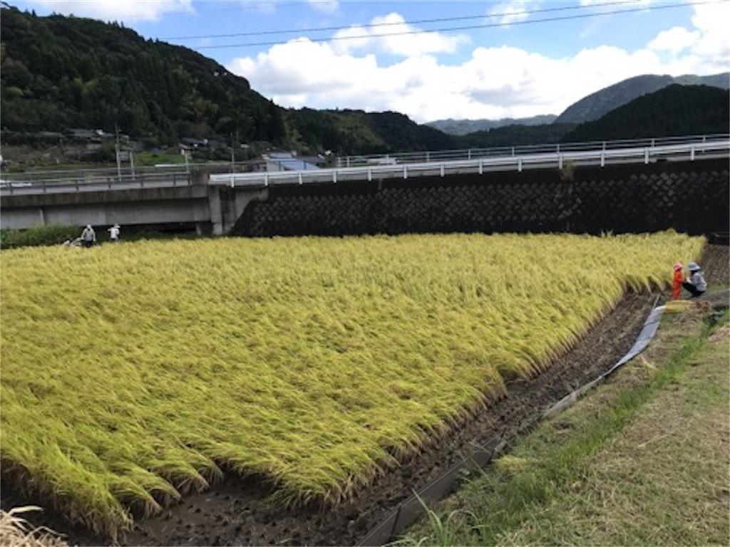 f:id:daisodaisuki:20181007202023j:image