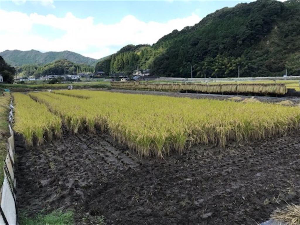 f:id:daisodaisuki:20181008201608j:image