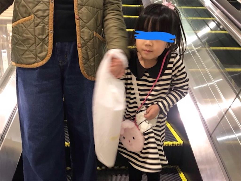 f:id:daisodaisuki:20181124072307j:image