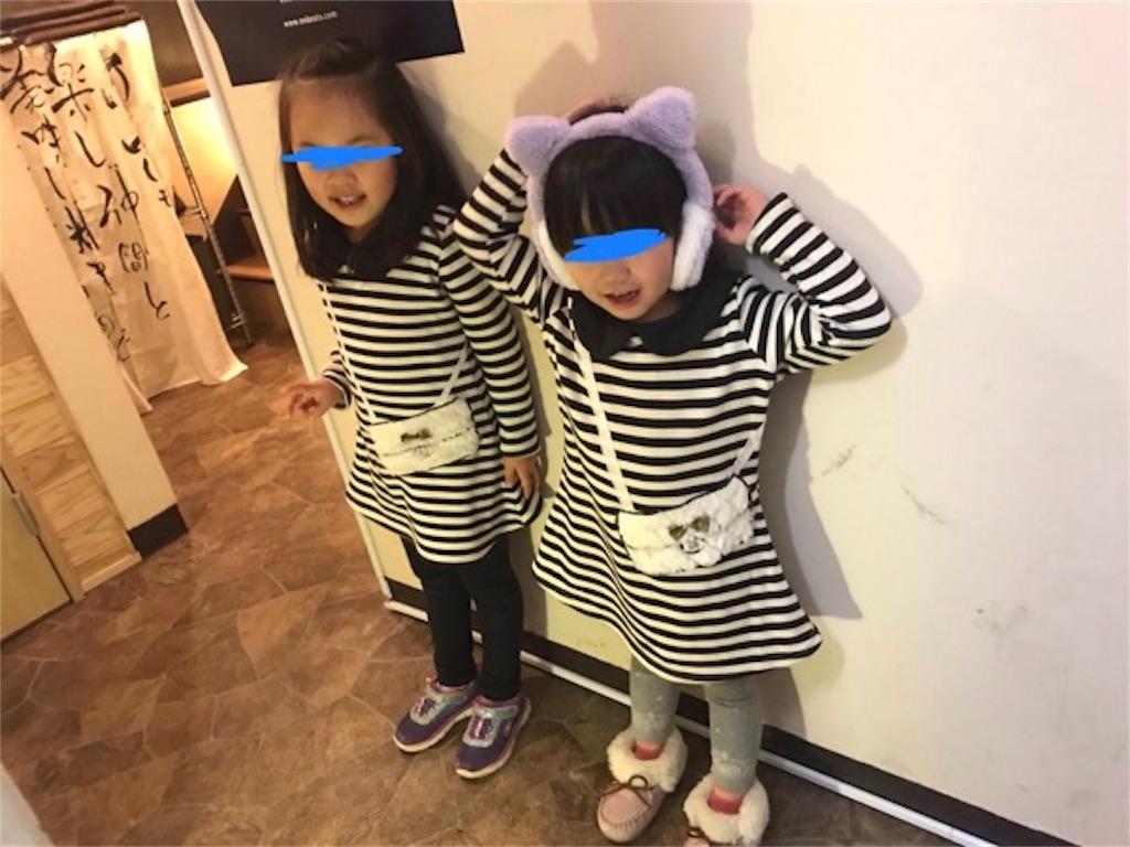 f:id:daisodaisuki:20181203124910j:image