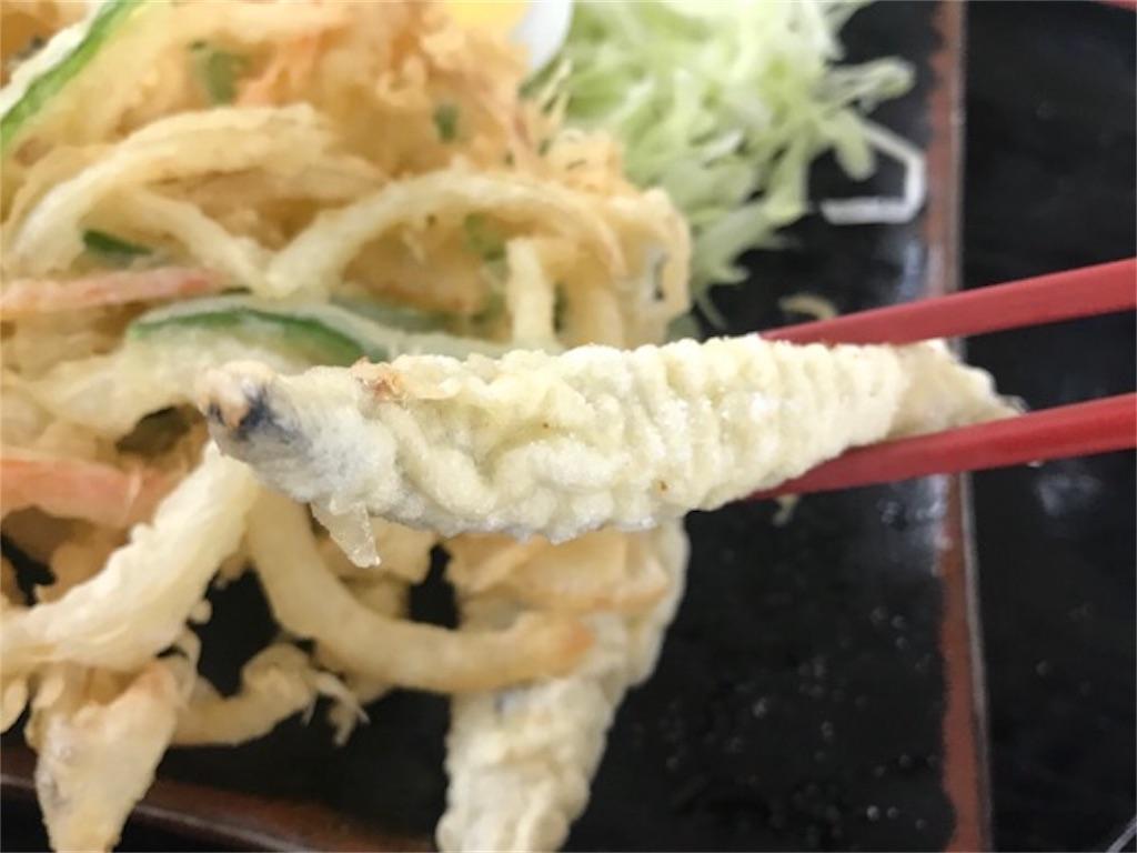 f:id:daisodaisuki:20190111135854j:image