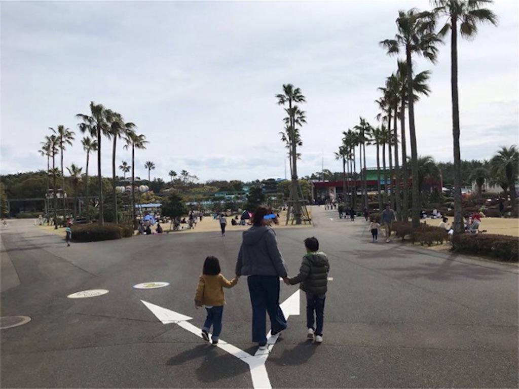 f:id:daisodaisuki:20190310211332j:image