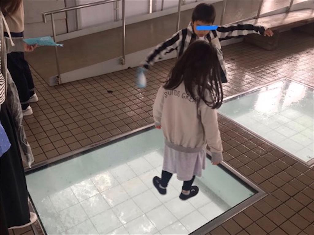 f:id:daisodaisuki:20190501213559j:image